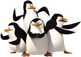 Oswoić Pingwinka…